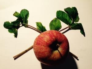 Apfel-Minze-Eistee