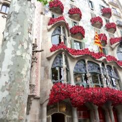 Casa Batllo Sant Jordi