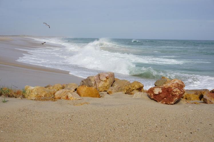 Strand Culatra Faro Portugal Algarve
